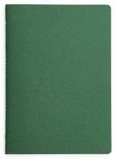 6. Field coloured field notes...Deskstore Notebook x2 (£7)