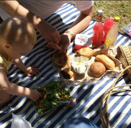 Osborne Family Picnic with Lemony Lemonade in 2016