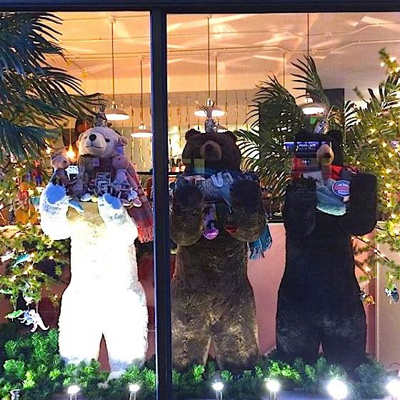 ARK Cambridge Christmas Window